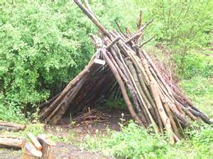 If you go down to the woods today 10 woodland activities for How to make a fort out of wood