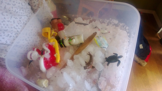 We've found all the animals, can we have more ice? We added crushed ice from the ice machine on the fridge.