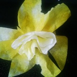 The finished daffodil