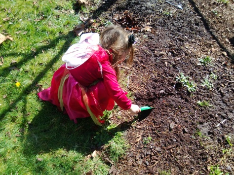 digging in mud