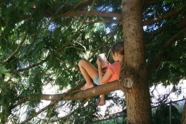 reading in the tree