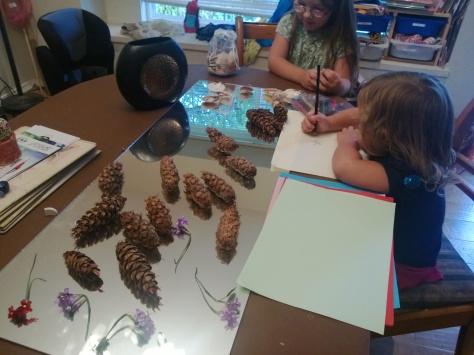 investigating natural materials