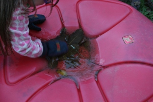 Look there is water and a leaf is floating. The ice has edges, I think there is water underneath.