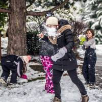 Snow Day: Ideas for Playing in the Snow