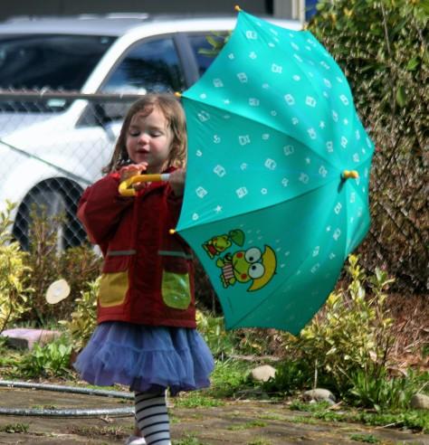 umbrella shield