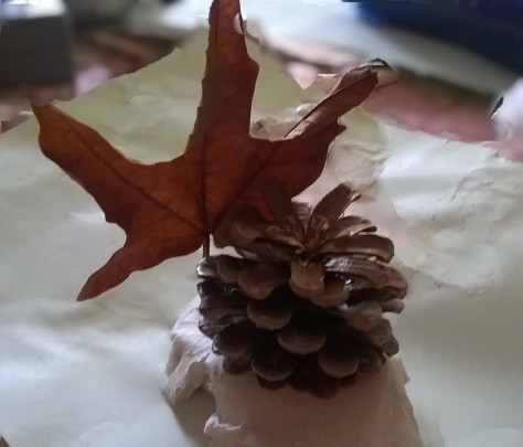 clay and leaves
