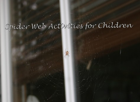 spider web activities