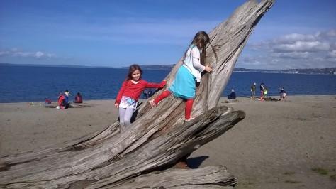 climbing on driftwood at Alki