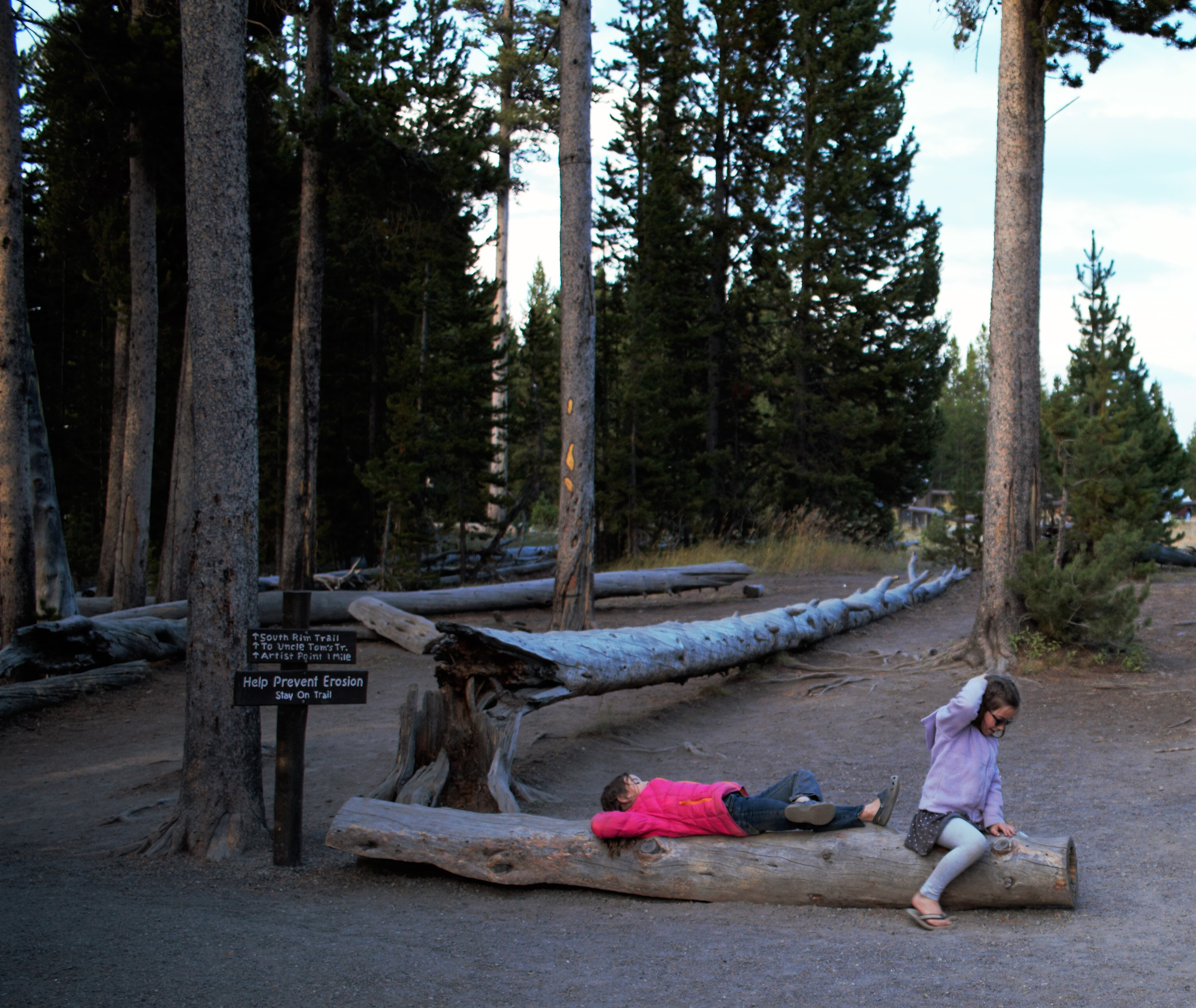 girls on log yellowstone.jpg