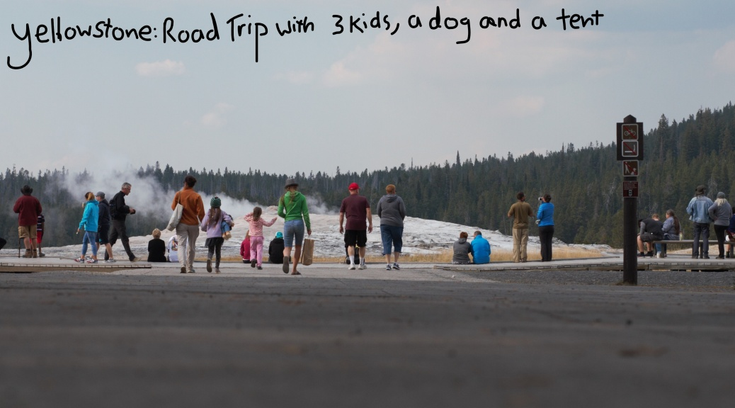 How to Survive a Road Trip from Seattle to Yellowstone with Three ...