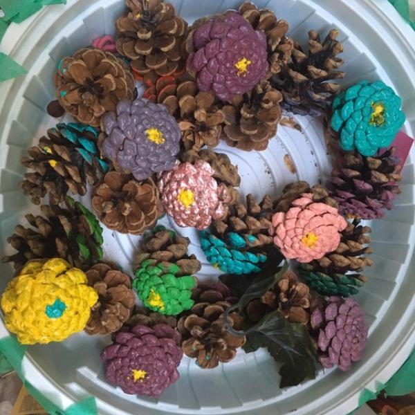pine cone zinnias
