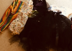 A selection of ready made costumes to use as a base. All under $10 from thrift stores
